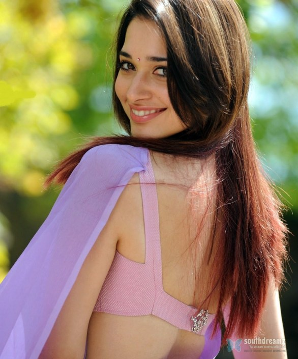 south indian glamouar actress tamanna hot sexy saree stills 23 586x705 Tamana looks very hot in saree
