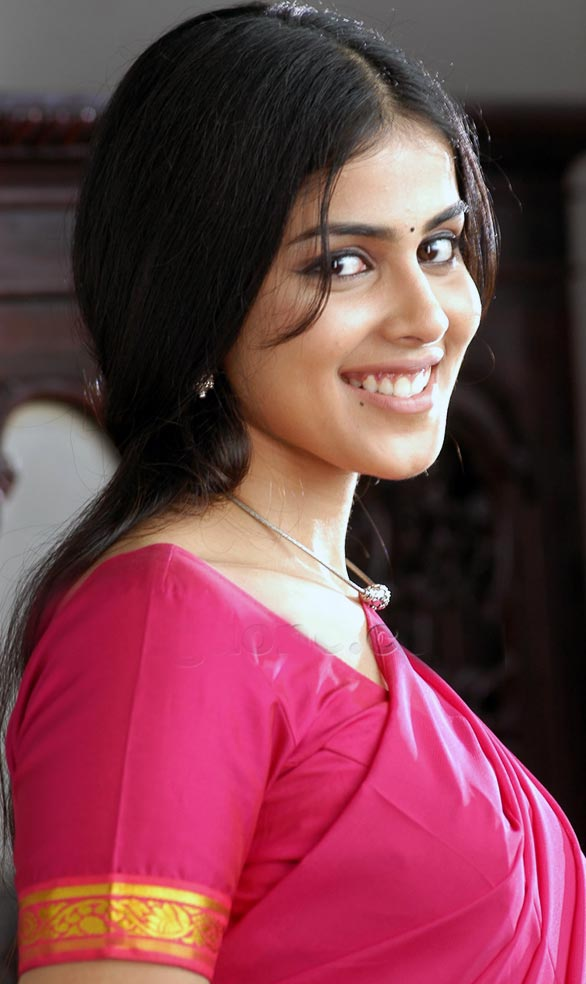 genelia Actress Genelias Future Projects