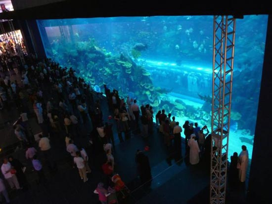 the dubai mall photo gallery 7 DUBAI MALL   A 20 Billion Dollar Project