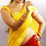 Anushka-hot-prostitute-role-in-vaanam-4