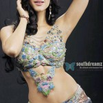 Shruthi Haasan's fantasy treat on cards