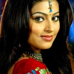 Sneha's next film