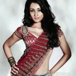 Trisha denies rumors on 'Fashion' remake