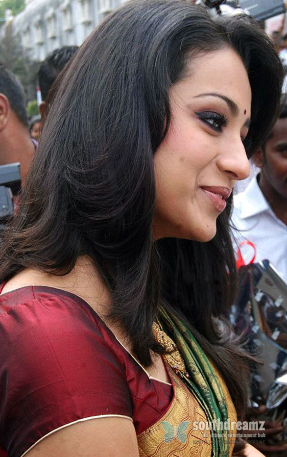 Trisha hot in Saree 8 Cute Actress Trisha   Good looking Photos