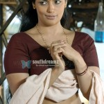 sexy-south-indian-actress-boobs-nipples-tits-blouse-bra-pallu-drop-shweta-menon-pic