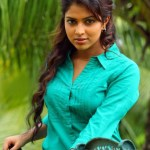 Will it be Amala Paul for Dhanush?