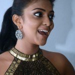 Vijay's pair Amala Paul