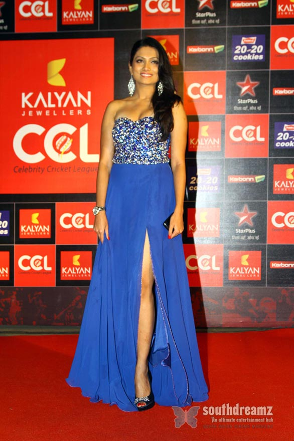 Hot Heroines at CCL 3 Curtain Raiser Photos 103 Celebrity Cricket League Season 3 curtain raiser
