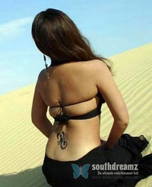 south indian glamour actress bare back latest hot stills 15 Hot & spicy actresses beautiful Bare Back photos