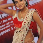 malayalam-actress-amala-paul-hot-photos-3