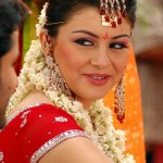 hansika-motwani-sexy-wallpaper-hot33