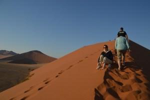 A9 Namibia Dunes