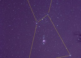 Orion constellation lines and tree