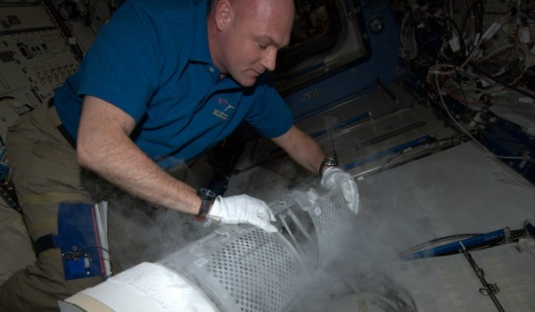 André Kuipers freezing blood samples aboard ISS (Credits: ESA).