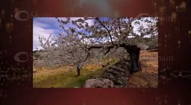 Extremadura, paisaje personal