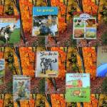 Spanish books for children to learn about farm animals