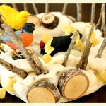 Building a nest : bird's nest projects for kids + recipe