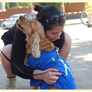6 ways to pamper your therapy dog