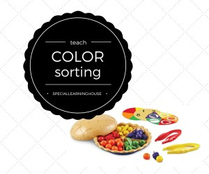Teach color sorting - Learning Resources super sorting pie. Special Learning House. www.speciallearninghouse.com
