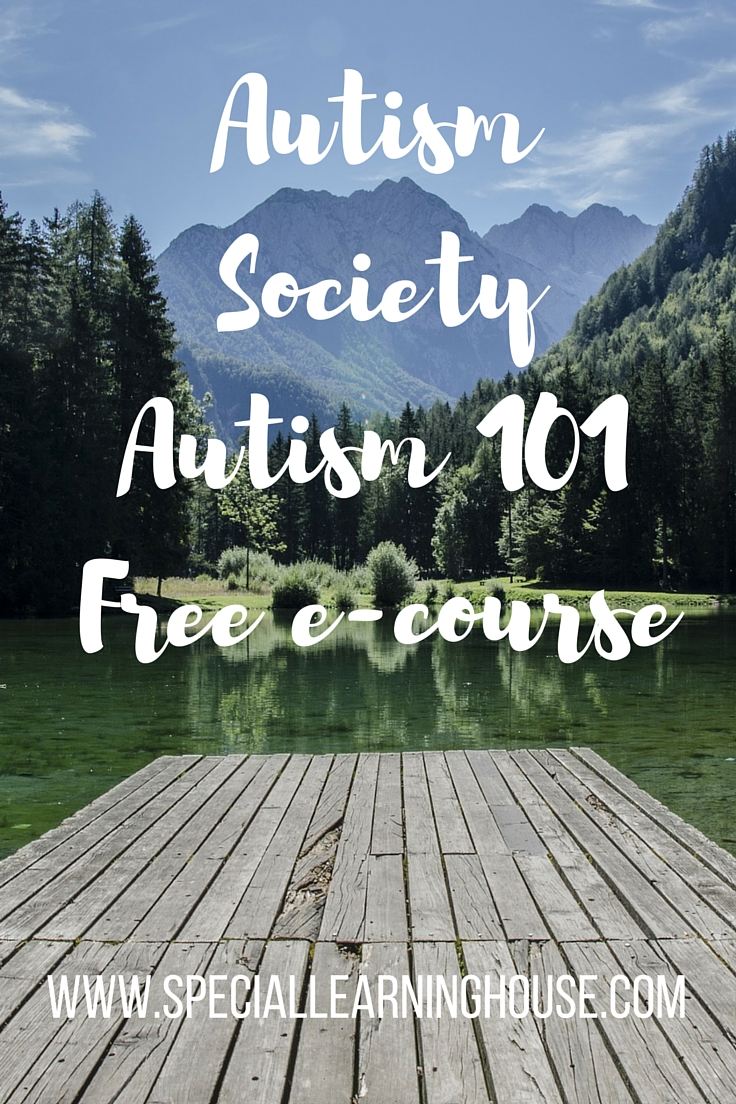 Autism 101 E-Course