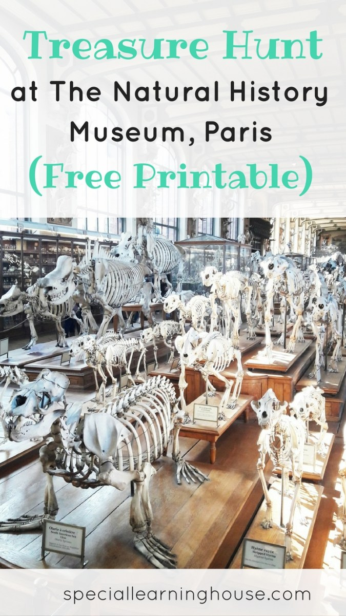 Treasure Hunt at The Natural History Museum Paris (Free Printable)
