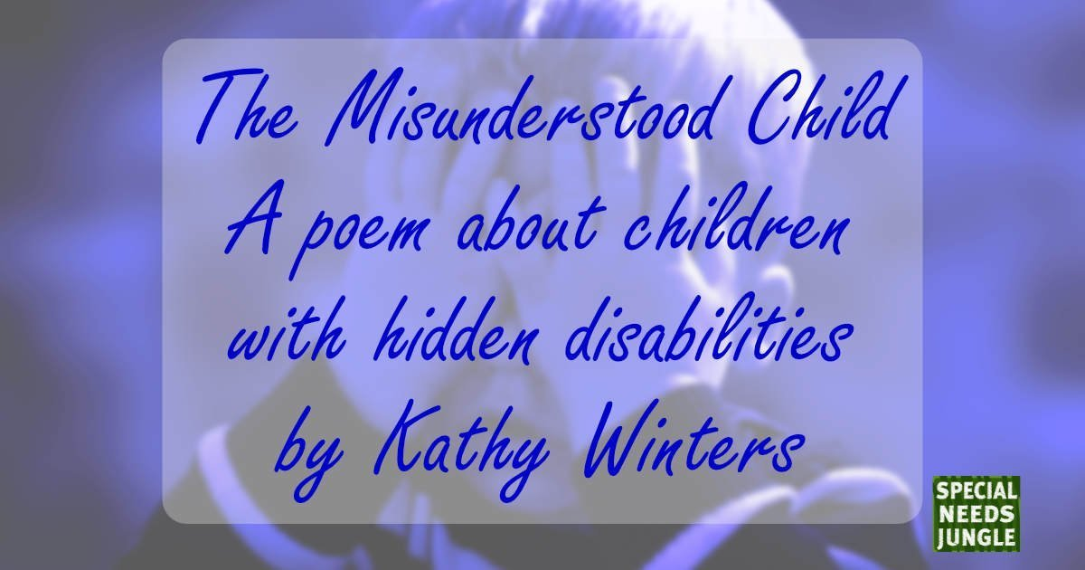 The Misunderstood Child - by Kathy Winters