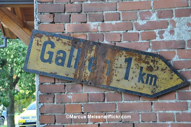 Gallien_Marcus_Meissner_flickr_spirisfeed