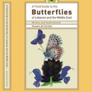 FG Butterflies