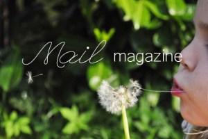 blog_28