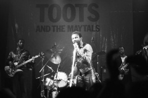 Toots 2