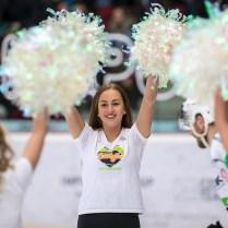 V neděli 27. ledna 2019 se v Karlovarské KV Aréně odehrál hokejový zápas 39. kola TipSport Extraligy ledního hokeje mezi celky HC Energie Karlovy Vary a HC Škoda Plzeň. ROMAN TUROVSKÝ