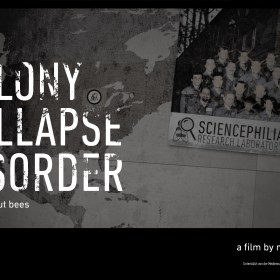 Colony Coppalse Disorder - a life without bees