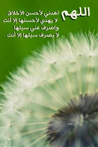 صور مكتوب عليها حكم وكلمات رائعة معبرة 2016 , كلمات وعبارات عن الحكمة حب عشق صمت حزن 2015_1409690969_823.