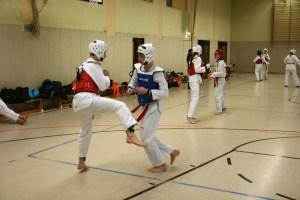Permalink auf:Verhalten beim Training