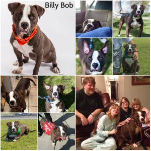 Billy Bob Stand Up For Pits