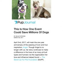 NEW Pup Journal piece on Spay/Neuter ANGEL Day! Read!