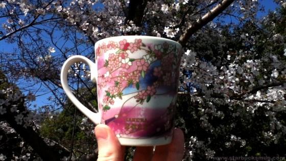 Starbucks Japan Sakura 2011 Coffee Mug
