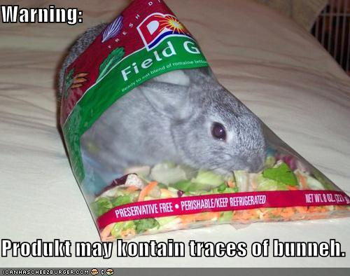 Product May Contain Traces of Bunny