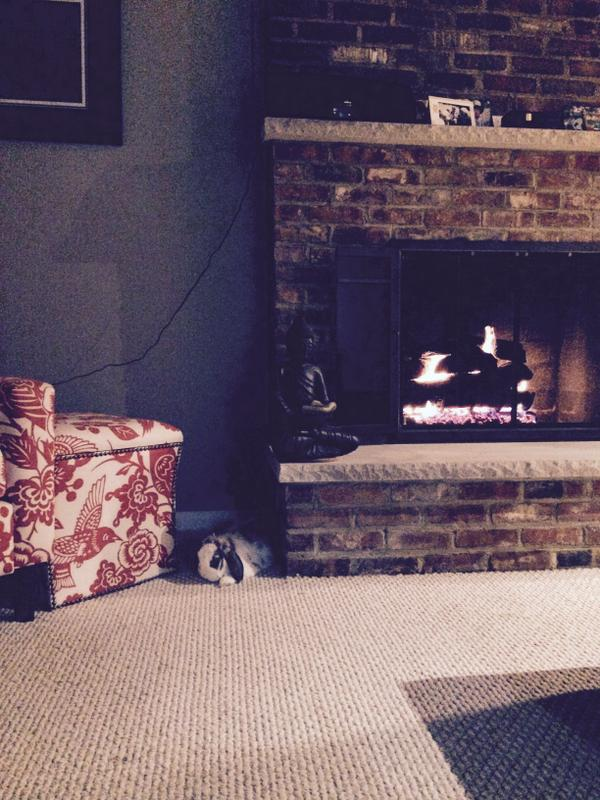 betsy beside the fireplace - tough life
