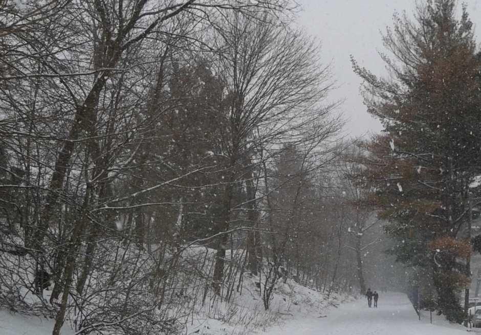 April2016-snowstorm-MinutemanTrail_sm