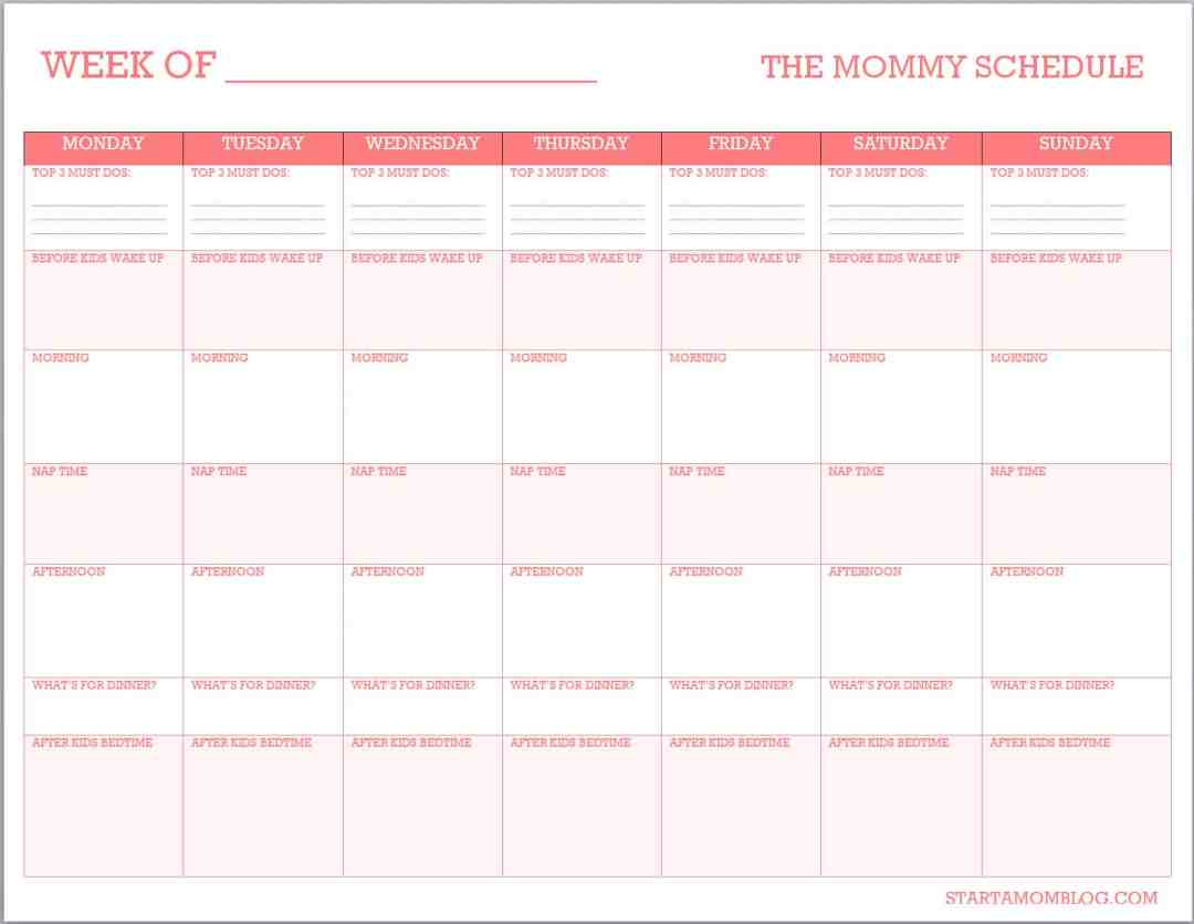The Mommy Schedule