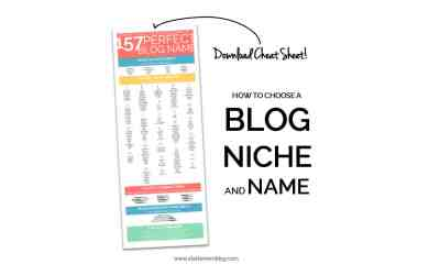 """How to Choose a Blog Niche: """"What Should I Blog About?!"""""""