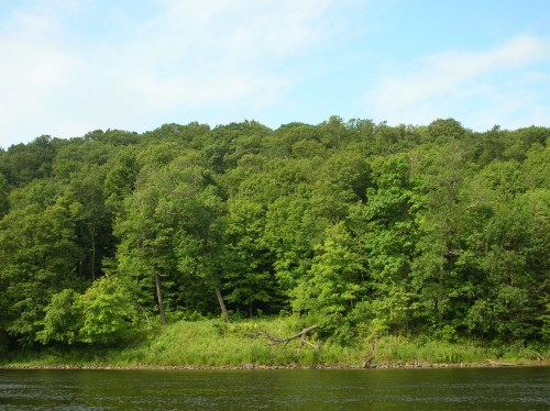 St. Croix River banks