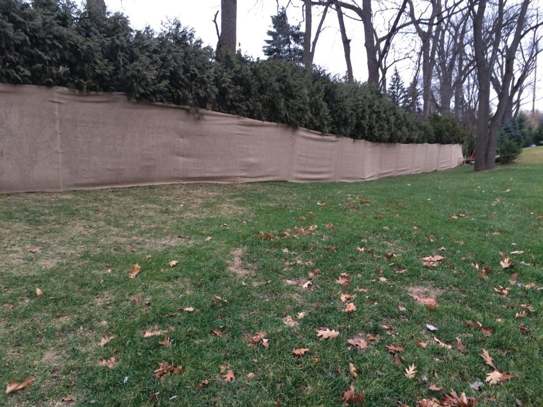 Fullsize Of Land Images Landscaping