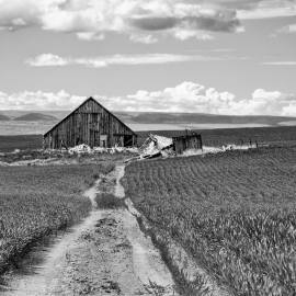 Old Abandoned Barn, 1st Road NW, Douglas County, Washington, 2013