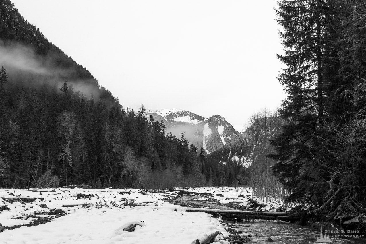 Winter, Carbon River Valley, Mount Rainier National Park, Washington, 2016