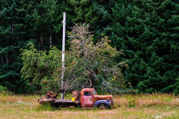 A photograph of a colorful old Dodge flatbed truck in a field in the rural community of Claquato, Washington.