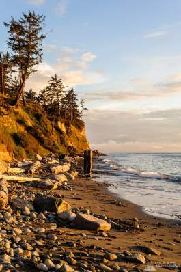 A photograph of the Summer evening light shining on the beach below the bluffs at the Hastie Lake Road Boat Launch on the Western shore of Whidbey Island, Washington.