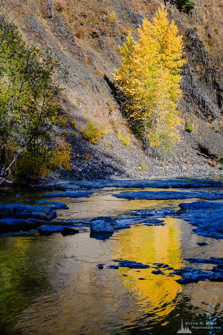 Autumn Reflections, Little Naches River, Washington, 2016