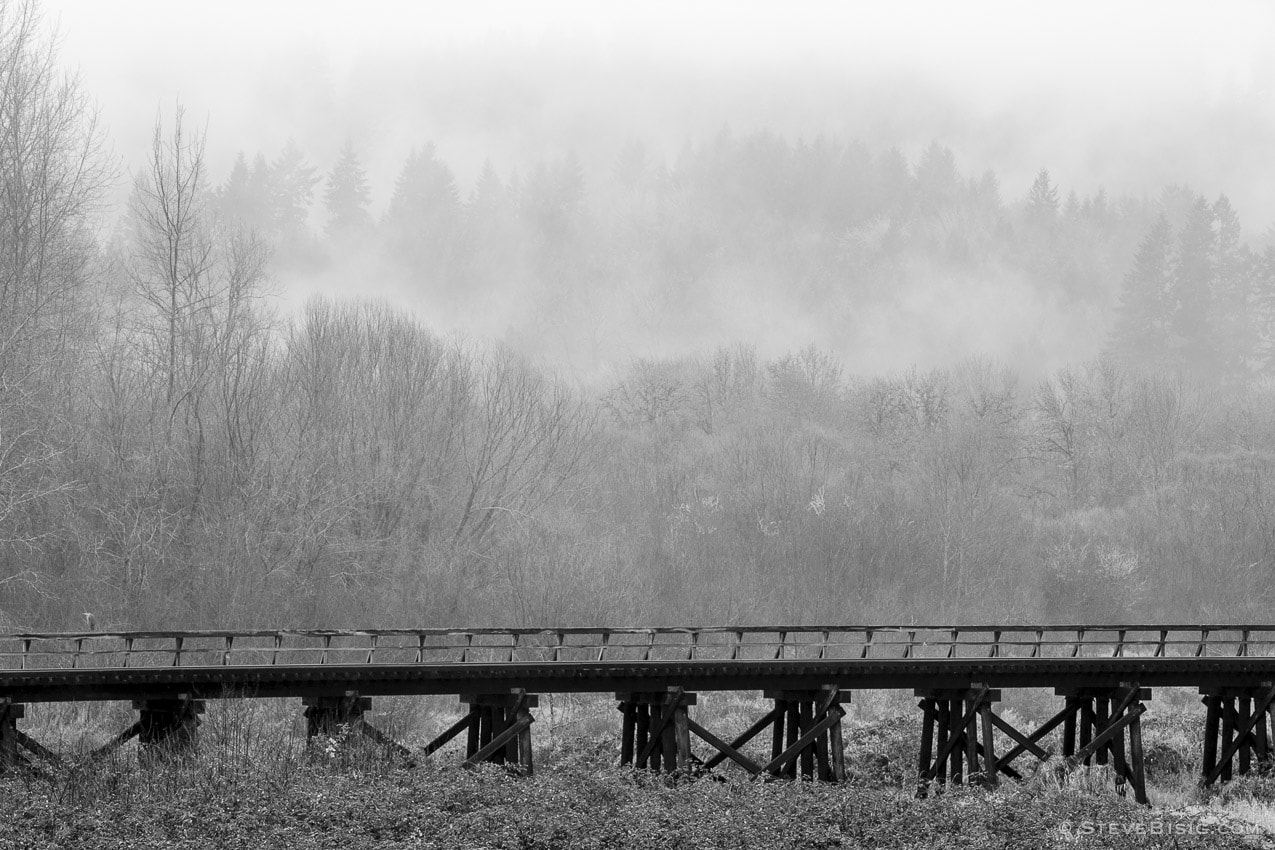 Railroad Trestle, Lewis County, Washington, 2015